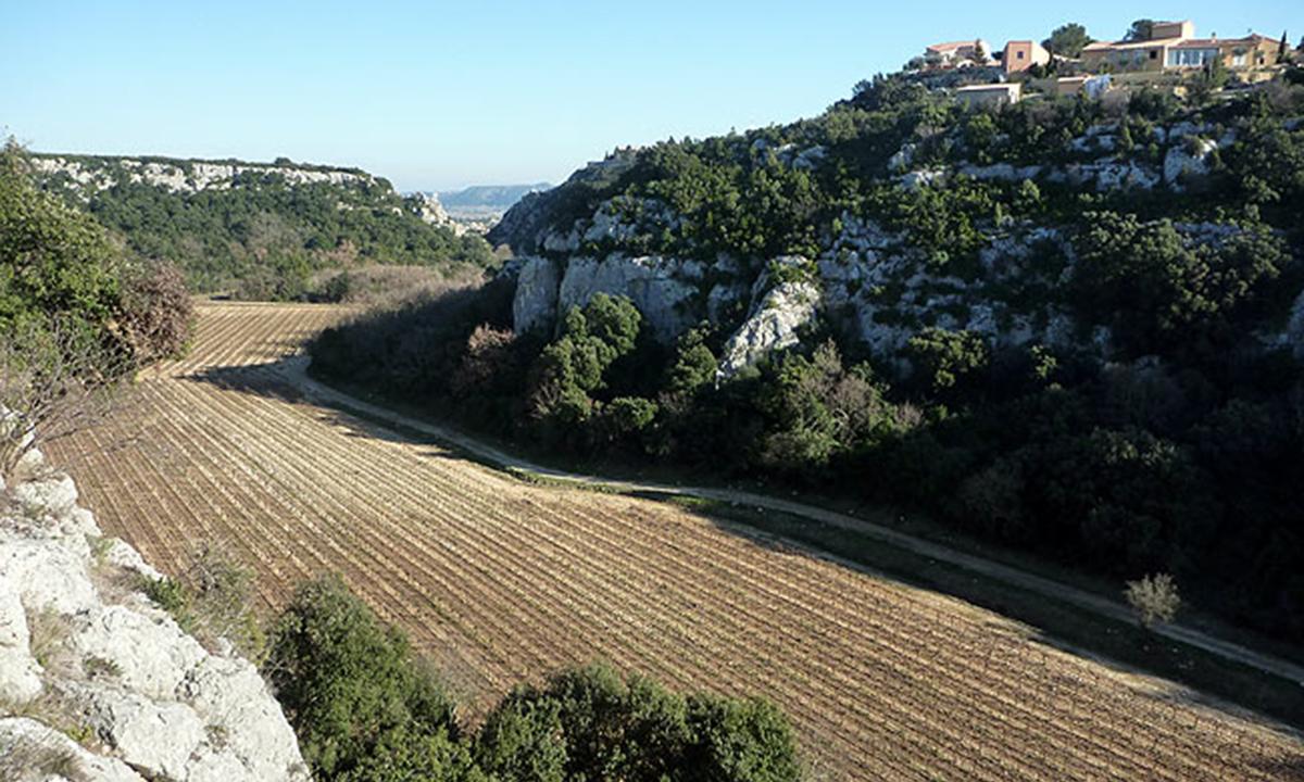 Escalade facile à Rochefort du Gard
